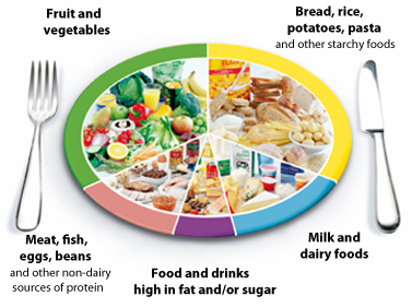 ... food that make up our diet, and shows the proportions we should eat