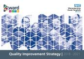 Cover of Quality Improvement Strategy